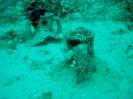 Scuba Dive Site Christine Lome_1