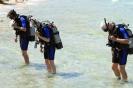 Dive Site Hotel Bay
