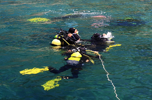 PADI Certification Courses Pricelist for summer season 2012